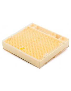 Caja cupularve